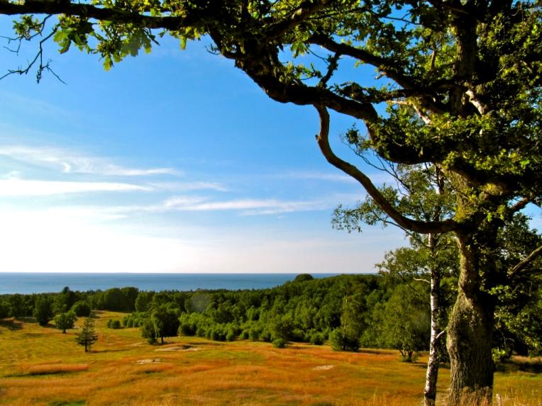 Kig ud over Kattegat fra Harehøj