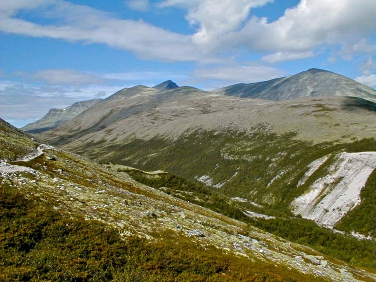 Ras - Stenskred i nederste højre hjørne