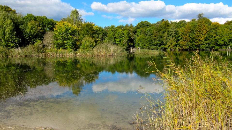Her har ligget en meget stor lergrav, der senere er blevet delvist opfyldt, nu en meget smuk sø.