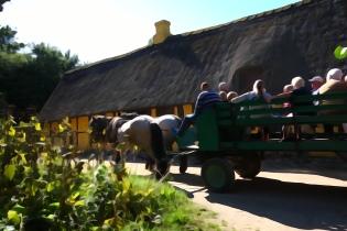 Hestevognskørsel