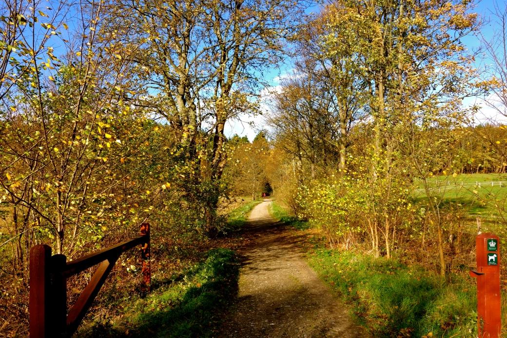 Indgang til Geels Skov