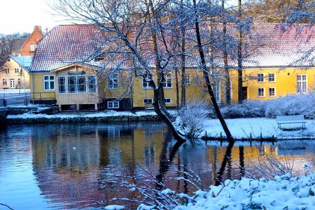 Damhuset i Lyngby
