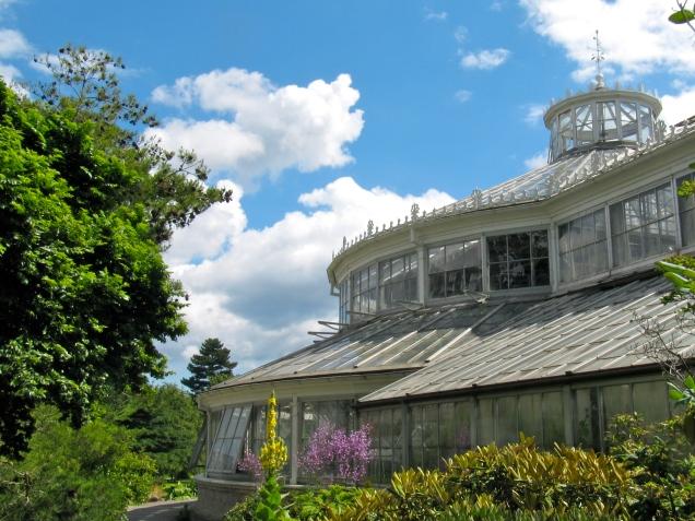 Palmehuset, Botanisk Have