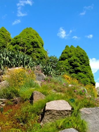 Botanisk Have