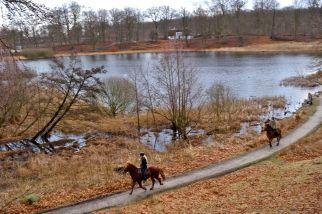 Studenterkilden bag ved søen