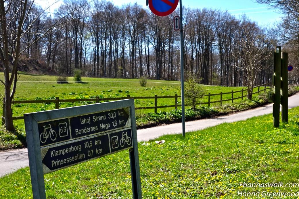 Vejen op i Frederiksdal skov