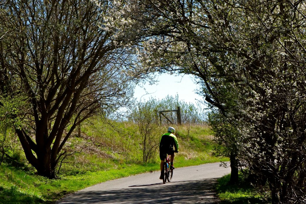 Cycling along the Mill Stream