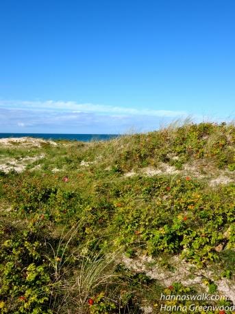 Tisvilde Strand