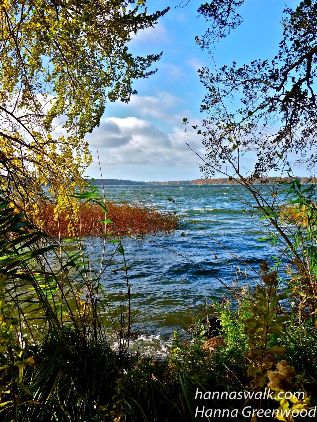 Ved furesøen, Holte