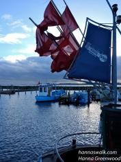 Fiskekutter i Rørvig havn