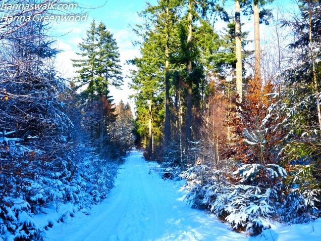 På vej mod Saltrup
