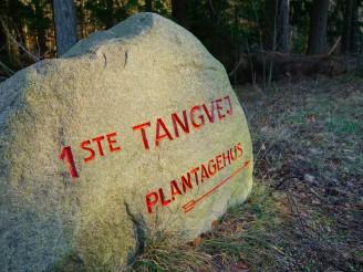 Hornbaek Plantage