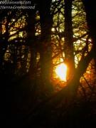 Sunset at Gribsoe st.
