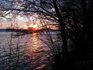 Furesøen