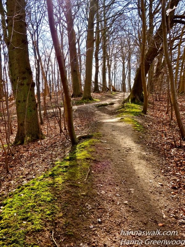 Søllerød Naturpark