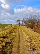 'Cumbria' Søllerød Naturpark