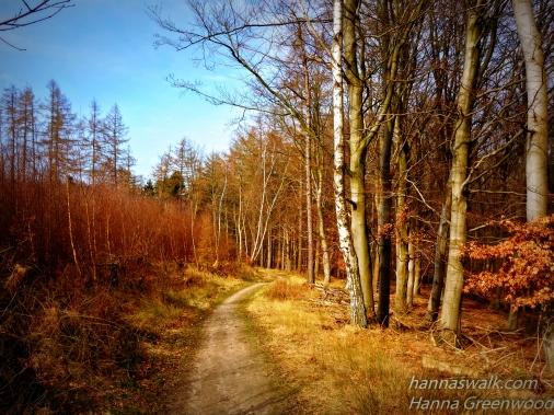 Vejen op til Højbjerg, Rudersdal