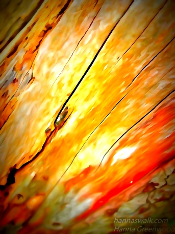 Debarked wood