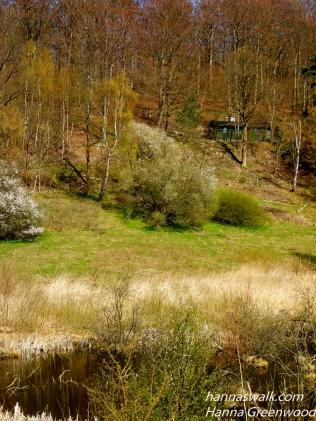 Skovene ved Buresø