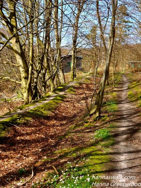 Ganløse Eged, Skovene ved Buresø