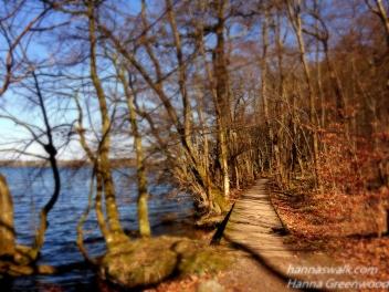 Sti i vandet - Nørreskoven