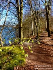 Nørreskoven, Denmark