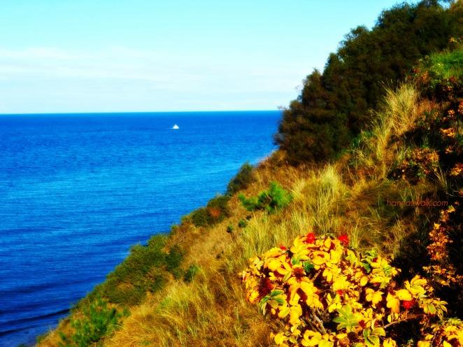 View of Kattegat