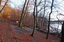 På vej mod Lyngby Sø