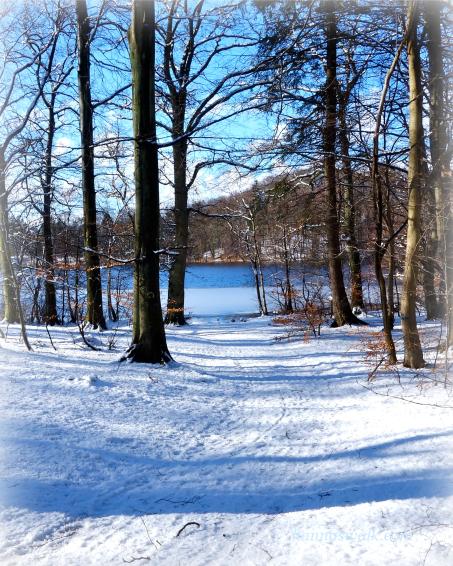 Rude Skov, Rudersdal Kommune