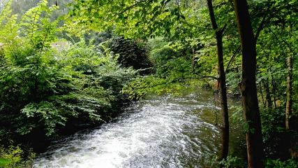 Nymølle, 'Floden'