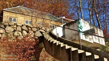 Bjergbestiersken og Norske Hus, Bagsvaerd Soe