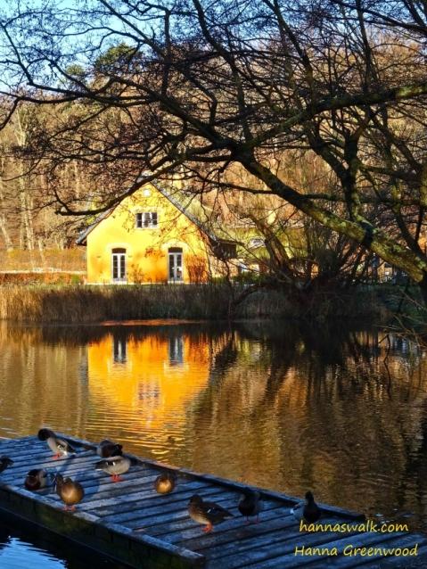 Nymoelle Dam, Kongens Lyngby