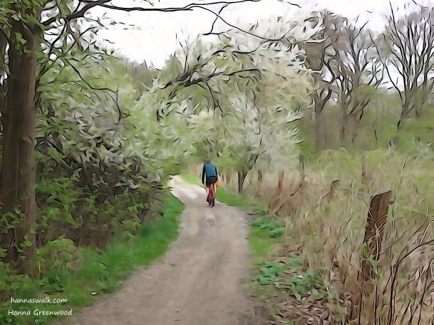 Cykel på sti