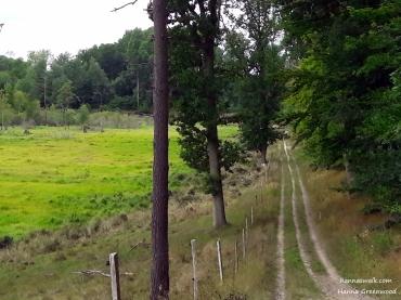 Klevads Mose, part of the mill river system, Mølleådalen