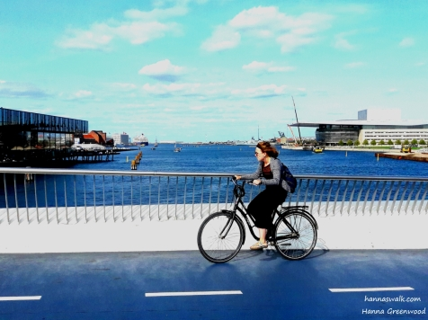 Inderhavnsbroen (2)