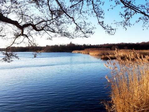 Lyngby Sø, Kongens Lyngby, Denmark